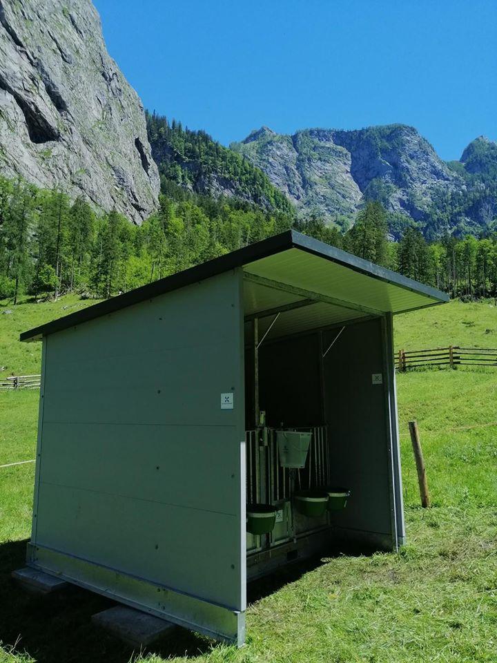 Kälberbox österreich