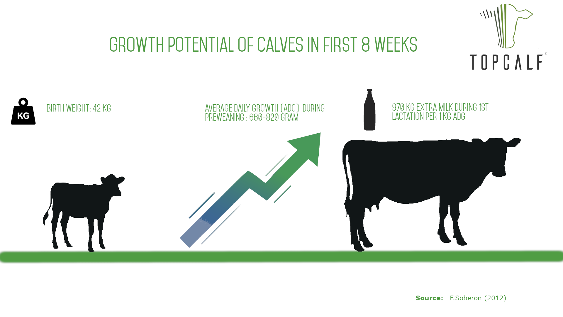 Growth potential calves