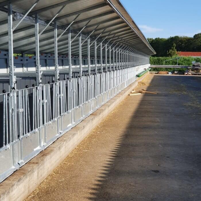 Major renovation: convert 100 lying areas into Topcalf boxes